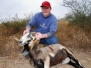 2007-2008 Deer