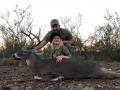 another-deer